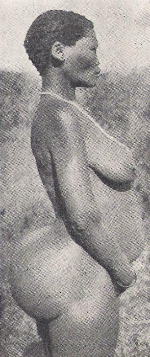 Saartje Baartman Venus Noire Blackisreallybeautiful